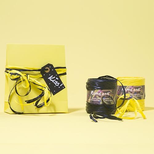 Presentpåse papper med etikett och raphleneband