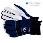 Vinterfordrade handskar